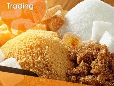 trading zucchero